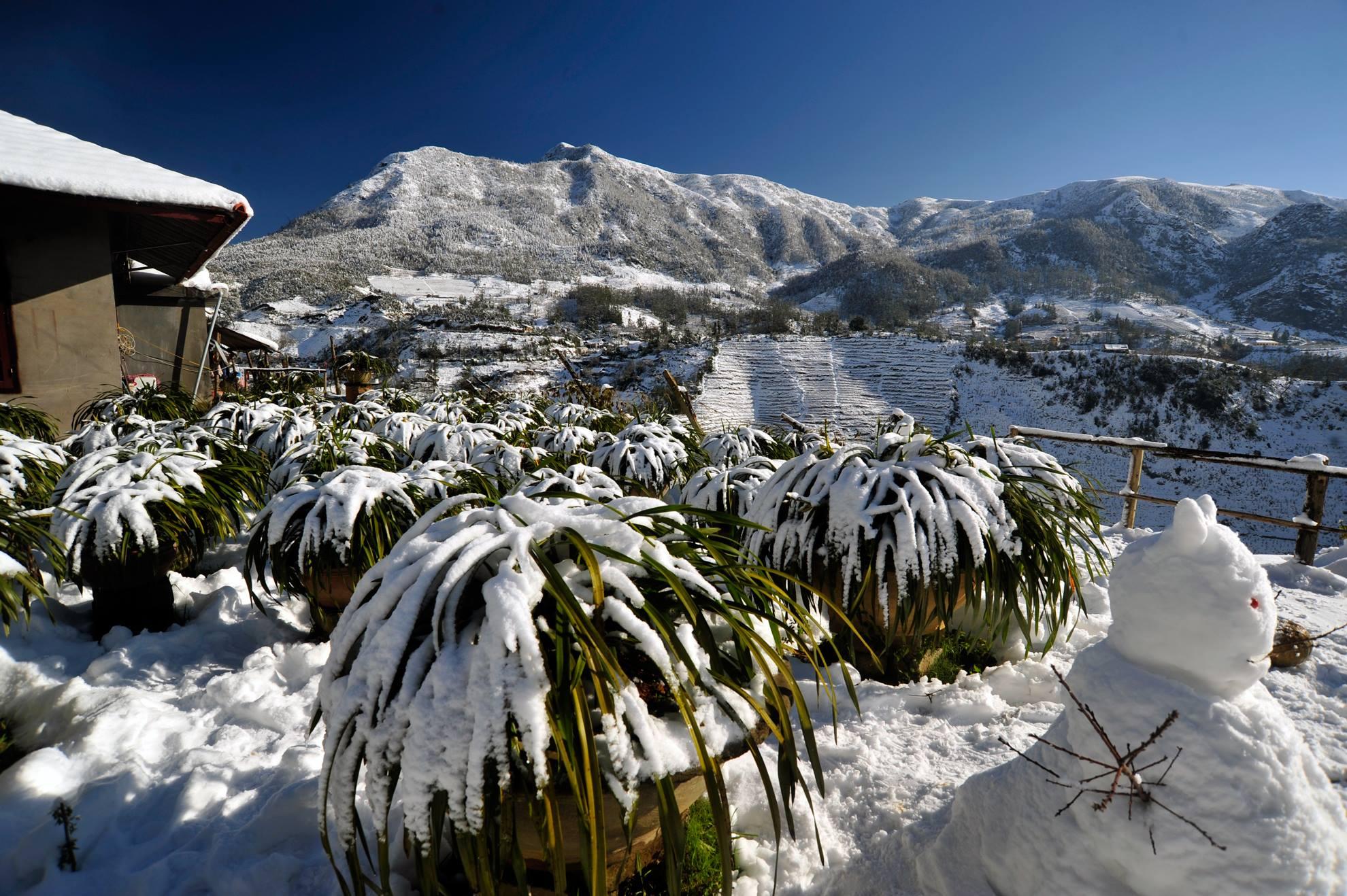 ảnh đẹp sapa mùa đông