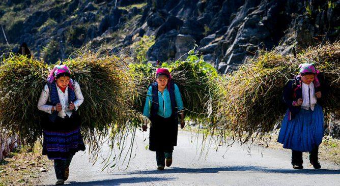 Du lịch Hà Giang qua ống kính của nhiếp ảnh gia