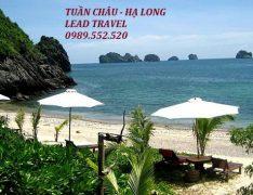 Tuần Châu Hạ Long Quảng Ninh