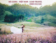 du lịch Hà Giang 2 ngày 1 đêm