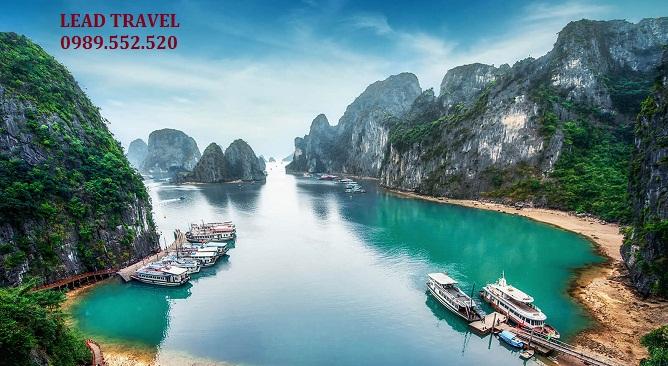 tour Vịnh Hạ Long