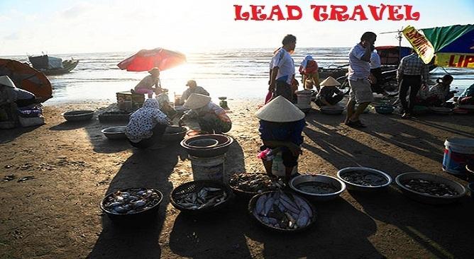 du lịch Hải Hòa Thanh Hóa