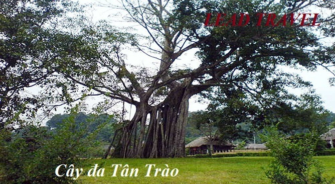 tour du lịch Tuyên Quang 2 ngày 1 đêm