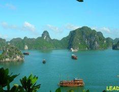 Tour du lịch Hạ Long 1 ngày