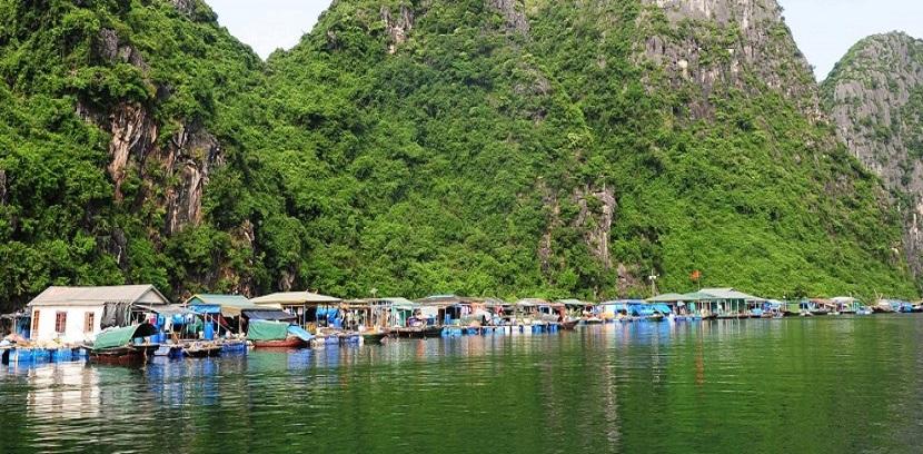 Tour Du Lịch Hạ Long 2 Ngày 1 Đêm Giá Rẻ Dành Cho Khách Đoàn