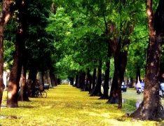 Tour Du Lịch TPHCM–Sapa-Cát Bà 6 Ngày 5 Đêm Giá rẻ