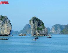 Tour du lịch Hạ Long 2 ngày 1 đêm Khuyến Mại