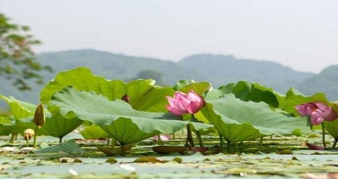 địa điểm du lịch gần chùa Hương