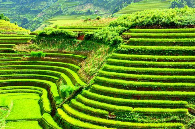 Tour Du lich Sapa 2 ngay 1 dem Cat Cat – Lao Chai – Ta-Van-2