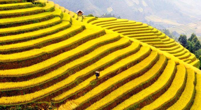 Tour Du Lịch Sài Gòn–Hà Nội-Hạ Long-Sapa-Ninh Bình 6 Ngày 5 Đêm