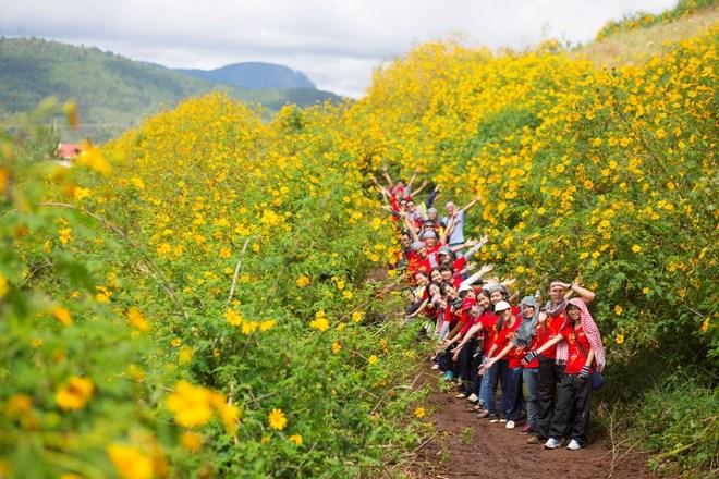 Tour Du Lịch Mùa Hoa Dã Quỳ Ba Vì 1 Ngày Giá rẻ