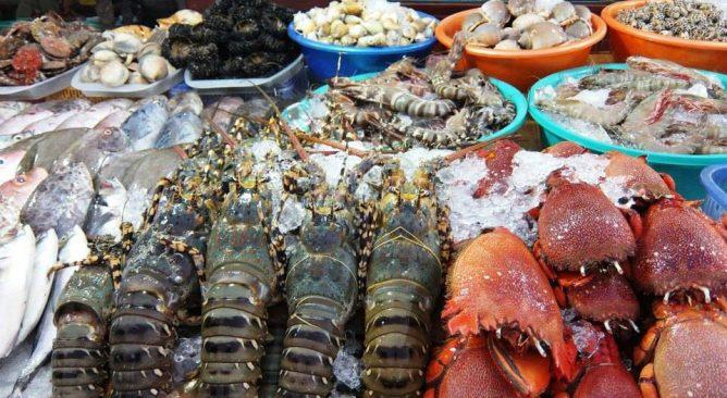 Tour Du Lịch Biển Hải Thịnh 2 Ngày 1 đêm Giá rẻ