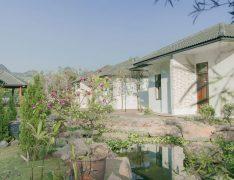 Tour Du Lịch Thảo Nguyên Resort Mộc Châu 3 Ngày 2 Đêm Giá rẻ