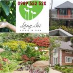 Tour du lịch Làng Sỏi in Farm Resort 2 Ngày 1 Đêm Giá rẻ