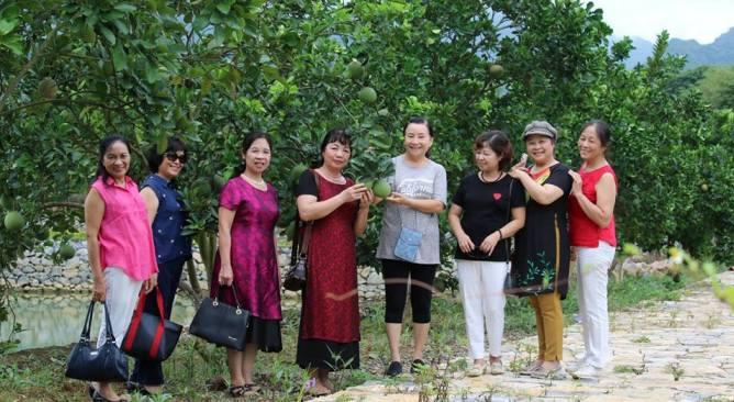 Vườn bưởi Làng Sỏi Resort in Farm