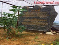 chùa Tam Chúc tỉnh Hà Nam