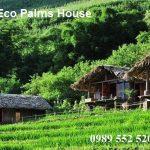 Top 10 homestay Sapa view thung lũng đẹp hút hồn bạn không nên bỏ lỡ