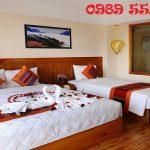 Đặt phòng Sapa Panorama Hotel giá rẻ, uy tín nhất 0989 552 520