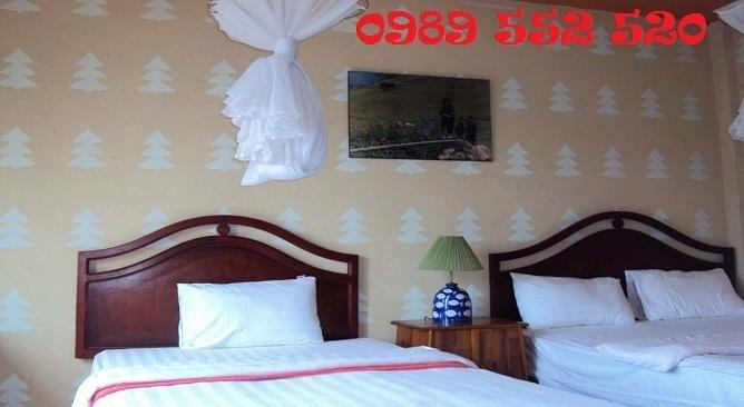 khách sạn darling sapa