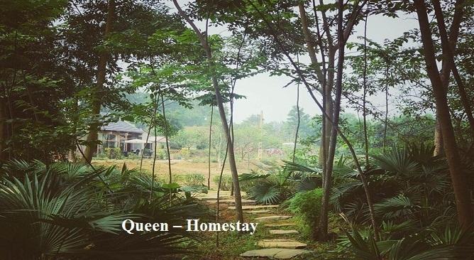 Queen Homestay Ba Vì