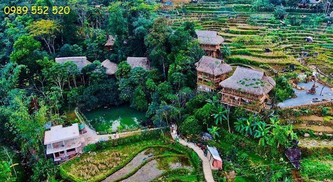 jungle lodge pu luong