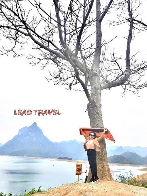 cây cô đơn na hang